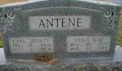 Vola Mae Antene