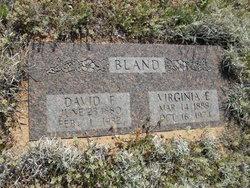 David F. Bland