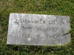 Ziba Andrew Gibson