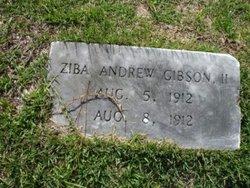 Ziba Andrew Gibson, II