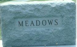 Moody Meadows
