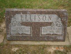 Lulu C <i>Schaeffer</i> Ellison