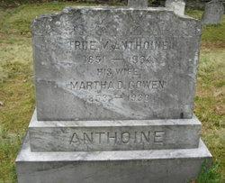 True M Anthoine