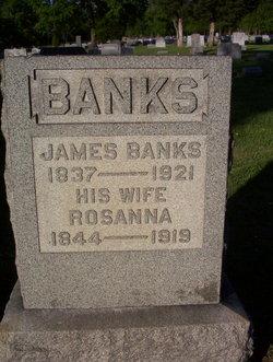 Rosanna <i>McConahy</i> Banks
