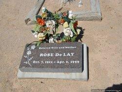 Rosie Etta <i>Akin</i> Delay