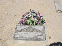 Nathan Columbus Delay