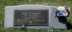 Carl J kayo Adamic