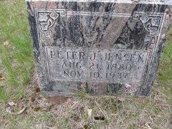 Peter J Jensen