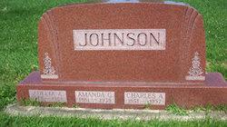 Amanda G Johnson