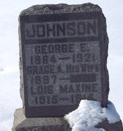 George E Johnson
