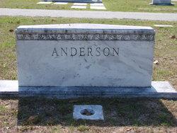 Percival R C Anderson