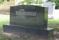 (Baby) Antle