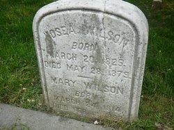 Mary A Wilson