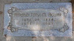 Antonio M Aguiar