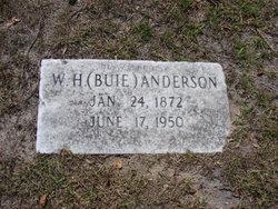 William H Buie Anderson