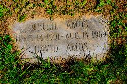 David Amos