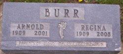 Arnold Adolph Burr