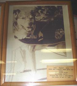 Major Sarge Von Luckner, III