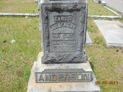 Carl Sanders Anderson