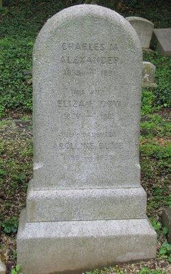 Apolline McLean <i>Alexander</i> Blair