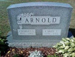 Carrie E Arnold