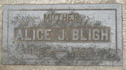 Alice J Bligh