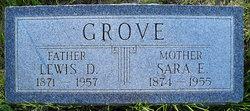 Lewis D Grove