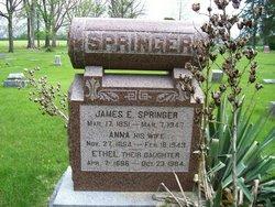 James E Springer