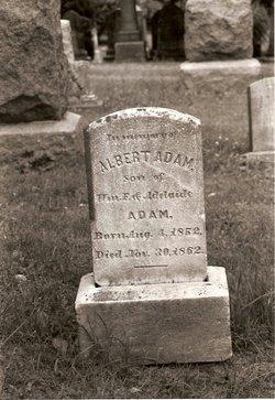 Albert Adam