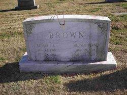Kenneth Lee Brown