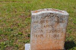 Albert Dump Akins