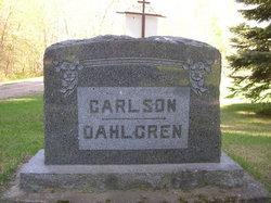 Albin Nestor Dahlgren
