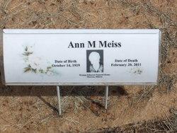 Ann N Meiss