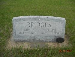 Thursey Carlin <i>Martin</i> Bridges