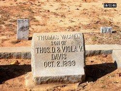 Thomas Vachel Davis
