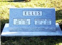 Gwendolyn Gwen <i>Owen</i> Ellis