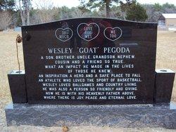 Wesley David Goat Pegoda