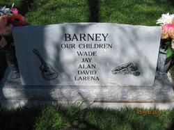 RaeAnne <i>Hooper</i> Barney