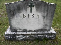 Stanley Bish