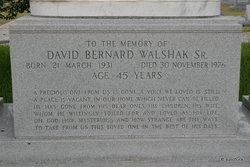 David Bernard Walshak