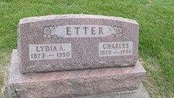 Lydia Ann <i>Denlinger</i> Etter