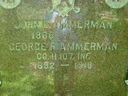 George F Ammerman