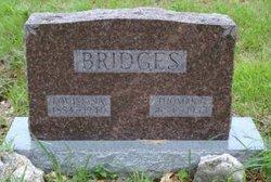 Thomas Green Bridges