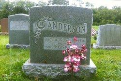 Hedvig Olivia Heddy <i>Eden</i> Anderson
