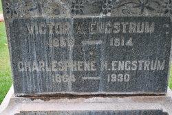 Charlesphene <i>Hammer</i> Engstrum