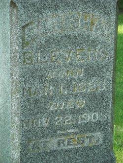 Elisha <i>(Blevens)</i> Blevins