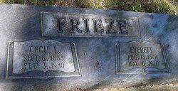 Cecil L Frieze