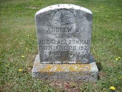 Andrew J. Bowman