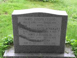 James J Culloo