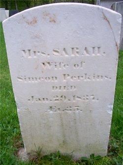 Sarah Sally <i>Washburn</i> Perkins